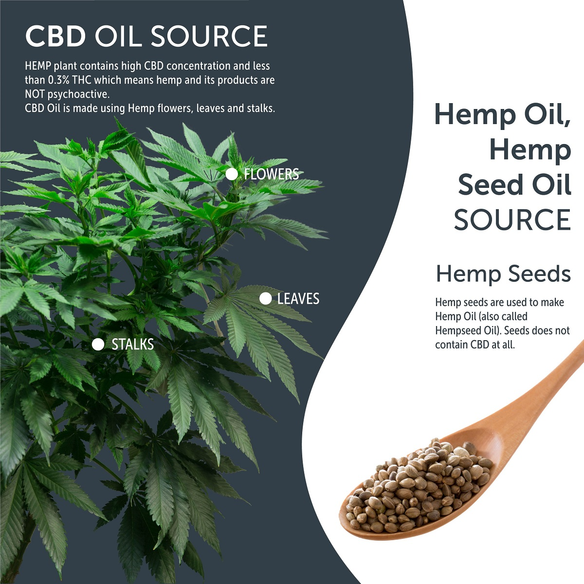 Cbd Oil And Hemp Oil What S The Difference Natural Pharmacy